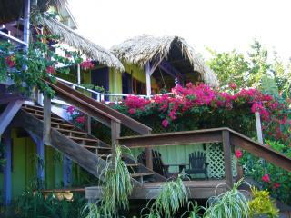 Casa Beya: Colorful, private BEACHhouse: dock&wifi
