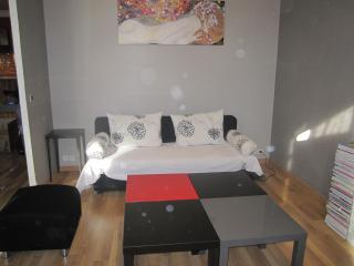 Beautiful 3 beds flat, ac, internet, central Nice