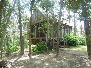 Charming jungle house located on 5 acres