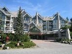 Clean well kept unit with private patio, free parking, big hot tub in lodge