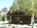 Comfortable and Clean 1 BR Cabin at Three Rivers Resort in Almont (#23)