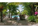 Affordable Turks & Caicos 1 Bed at Grace Bay Place