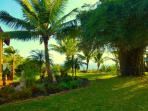 Maui Eco Retreat -  Live Elegantly Green!