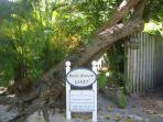 Ricks Retreat In Captiva Florida