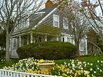 2 Bedroom 2 Bathroom Vacation Rental in Nantucket that sleeps 5 -(9964)