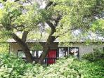 Kaleido House - 2/1 duplex by Zilker, 2 mi to DT!