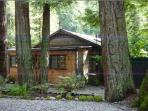 3 Bedroom Cabin In Redwoods of Boulder Creek CA