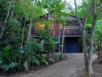 Architect's tropical treehouse Cairns