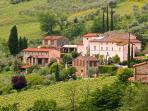 Colleverde Vineyards, 6 bedrooms villa in Tuscany