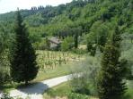 4 Apt Rentals in the heart of Tuscany 1-3 bedrooms
