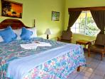 PARADISE PSI - 91448 - BARGAIN | VIBRANT | BOUTIQUE B&B | LOWER KING ROOM WITH POOL - NEGRIL