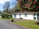 TRANQUILLITY, on-site fishing, WiFi, ground floor accommodation, near Liskeard, Ref. 21135