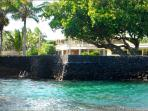 10%Off Last Min! Kapoho Oceanside Villa-Snorkel, Fish, & Swim from Oceanfront Property