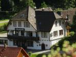 Group House in the Black Forest for up to 34 persons  - DE-454-Bad Rippoldsau-Schapbach