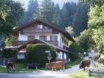 Vacation Apartment in Garmisch-Partenkirchen - 1399 sqft, 2 patios, beautiful, relaxing (# 5074)
