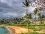 Kapalua Golf Villa Oceanview 2 Bedroom-Frm $275