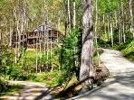 Asheville Chalet – 16 beautiful wooded acres, hot tub, hiking, sleeps up to 6