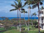 Beautifuly Decorated Vista Waikoloa Beach Resort Condo E-205