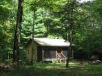 Woodland retreat - cabin near Oneida Lake