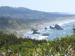 condo in wild and scenic Oregon,  ocean town