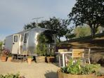 Airstream at Starr Ranch Vineyard & Winery