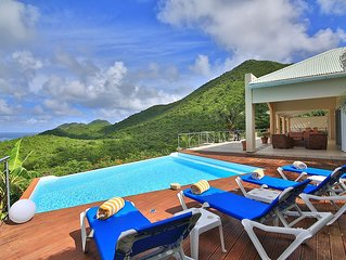 BLUE PEARL...Such a deal!! Beautiful villa, gorgeous views, and very - Grand Case vacation rentals