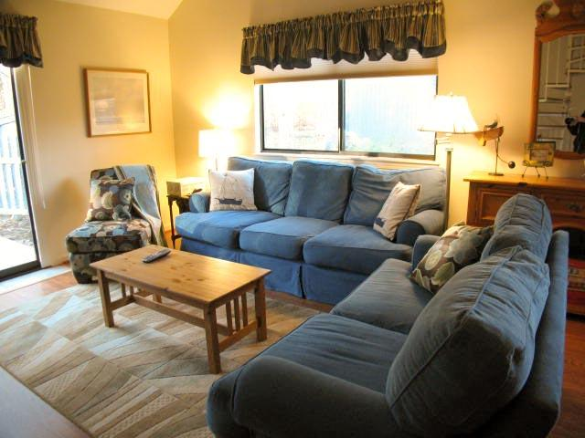 Living Area - Ocean Edge with Central A/C & Pool (fees apply) - AL0163 - Brewster - rentals