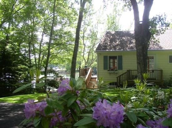 View of Dash Inn - DASH INN | EAST BOOTHBAY | COVE-SIDE | COTTAGE GARDEN| ROMANTIC GETAWAY | KAYAKER'S DREAM - East Boothbay - rentals