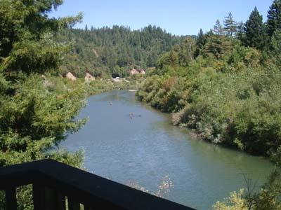 Dock Calm, Upstream Russian River Views from Deck - Dock Calm - Guerneville - rentals