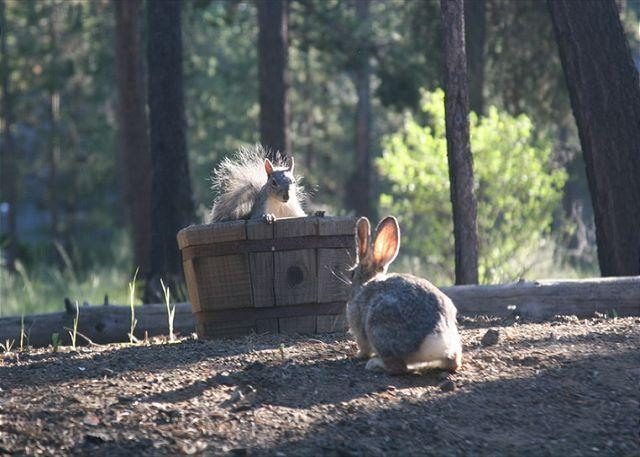 Sam and Bob - Welcoming Sunriver Home with Natural Landscaping and Large Deck Near Shopping - Sunriver - rentals