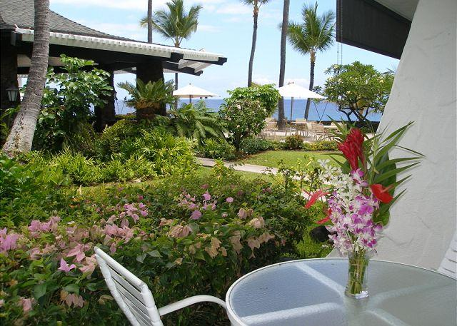Lanai - Casa de Emdeko  133 - Kailua-Kona - rentals