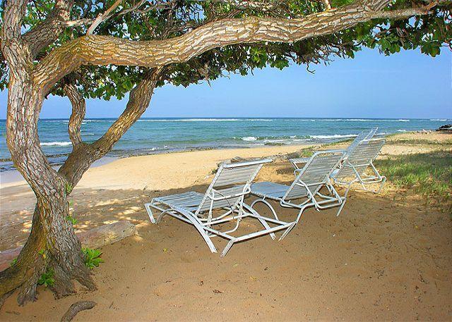 Waipouli #C-301: 2bdr/3bath Ocean front property - Image 1 - Kapaa - rentals