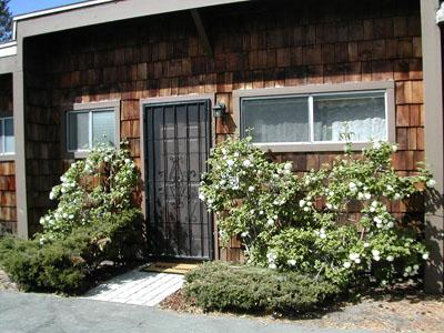 Exterior - 439 Ala Wai, 161 - South Lake Tahoe - rentals