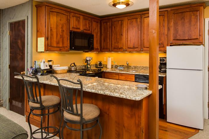Renovated Kitchen & Fully Equipped - Ski-in Condo w/ Washer/Dryer. Discount Lift Tix* - Steamboat Springs - rentals