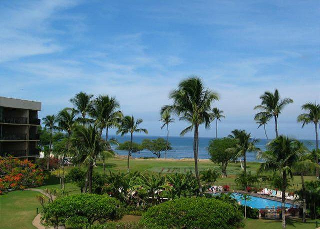 Maui Sunset 409A Recent remodel with full kitchen and ocean view! - Image 1 - Kihei - rentals