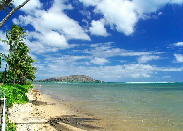 view from the backyard - Contemporary, Chic, Beachfront home in Honolulu location | Last Minute $395! - Honolulu - rentals