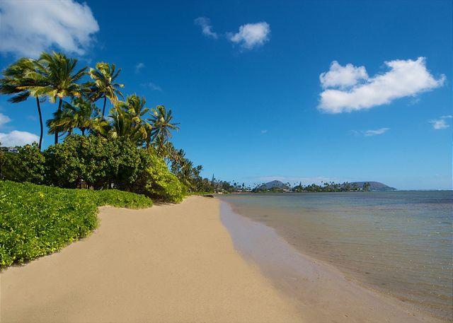 The Banyan House: Spacious Beachfront 5 Bedroom with pool in Honolulu - Image 1 - Honolulu - rentals