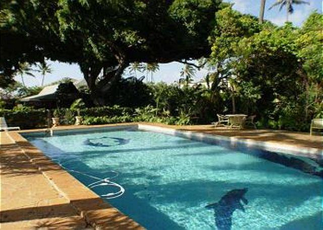 shared pool has tall security fence, cottage in background - Private home with beach access & pool, so close to everywhere you want to go! - Honolulu - rentals