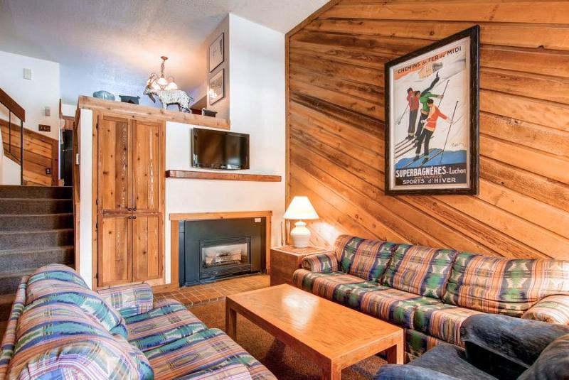 Cedars 47 - Ski-In/Ski-Out - Image 1 - Breckenridge - rentals