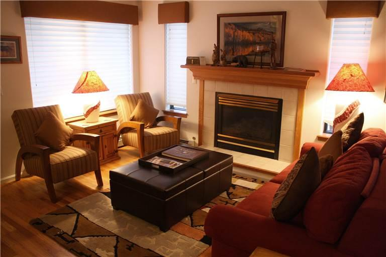 Elegant Park Forest Estates 3 Bedroom Townhomes - PF474 - Image 1 - Breckenridge - rentals