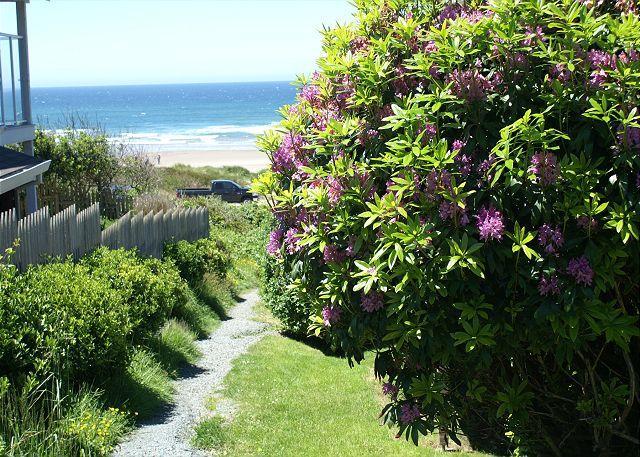 Beach House Path to Manzanita Beach - BEACH HOUSE~SPECTACULAR VIEWS OF THE BEACH AND NEAHKAHNIE MOUNTAIN!! - Nehalem - rentals