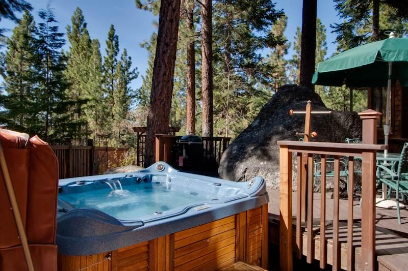 Organic Architectural Style Tahoe Home, located in a Lakefront Community (SK05) - Image 1 - Zephyr Cove - rentals