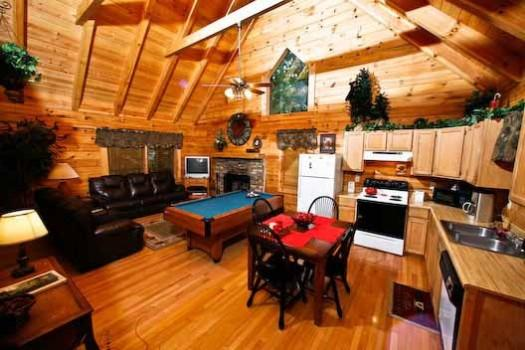 Bear Mountain - Image 1 - Sevierville - rentals