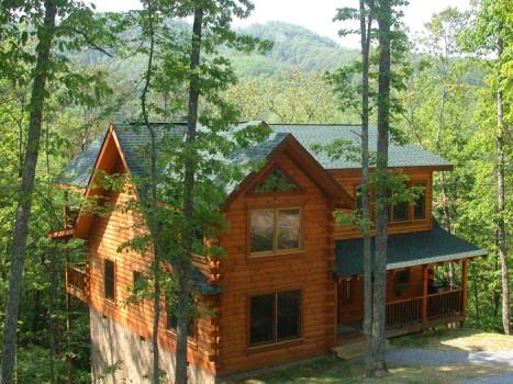Heart's Dream - Image 1 - Sevierville - rentals