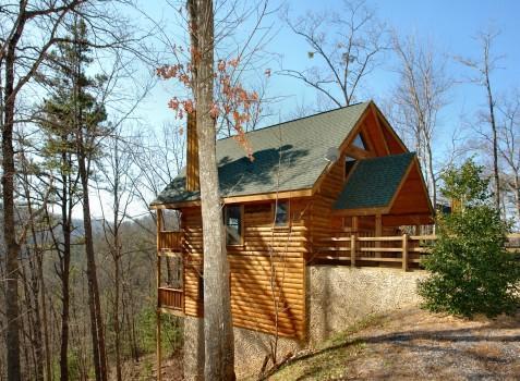 Wild Willow - Image 1 - Sevierville - rentals