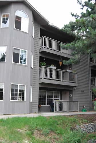 View of Condo - Quiet In The Pines - Estes Park - rentals