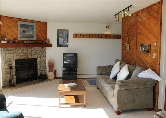 BR204B Ideal Condo w/Great Views, Wifi, Fireplace, Clubhouse & Carport - Image 1 - Silverthorne - rentals