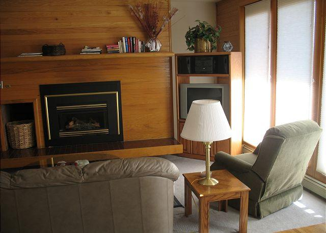 TR412 Timeshare Condo w/Wifi, Clubhouse, Mountain Views, Fireplace - Image 1 - Silverthorne - rentals