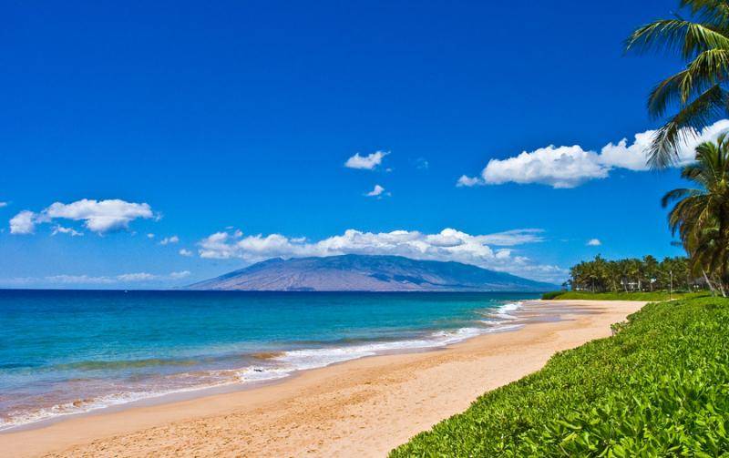 Our beautiful beach!  - Beautiful, luxury Resort Condo with LOW rates! - Kihei - rentals