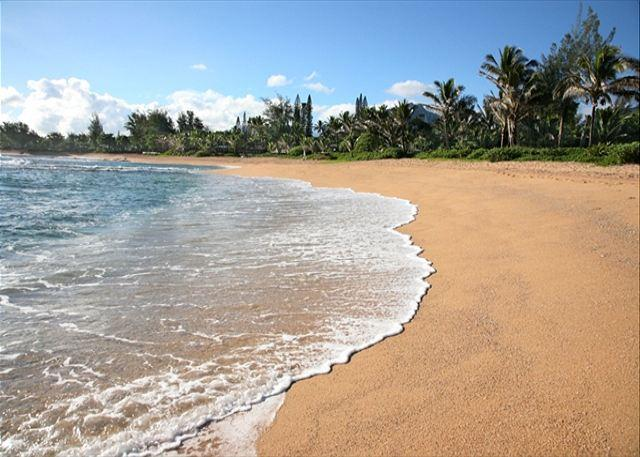 Offering 15% March Dates!! Remodeled Haena Home!! Short walk to the beach - Image 1 - Hanalei - rentals